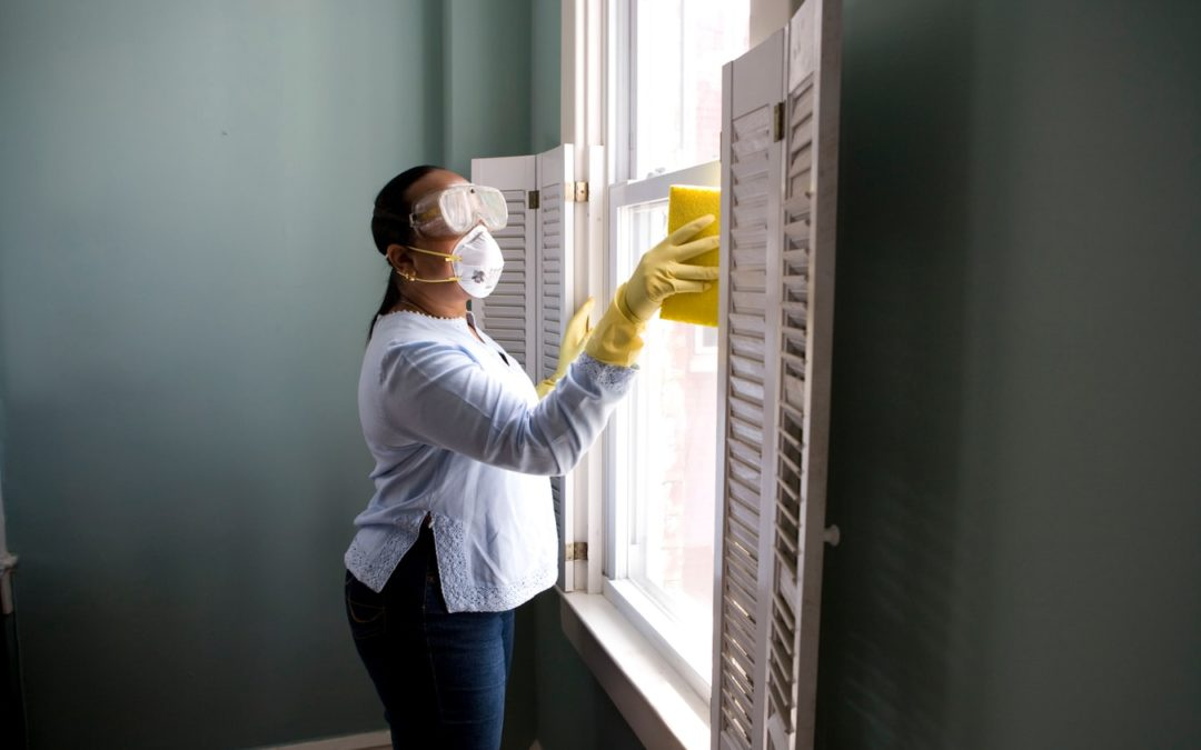Window Cleaning 8